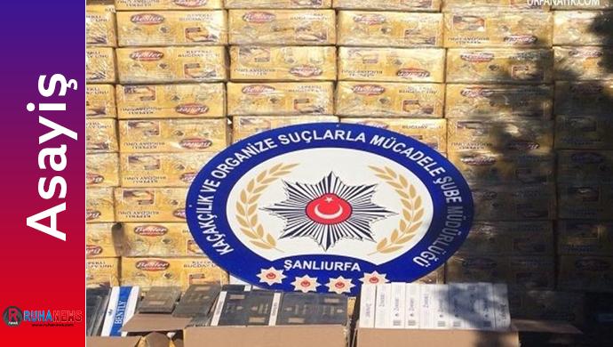 262 Bin Paket Kaçak Sigara Ele Geçirildi
