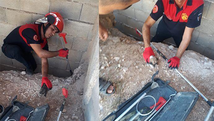 6 yavru köpek duvara sıkıştı: İmdatlarına itfaiye yetişti-(VİDEO)