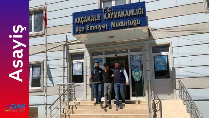 Akçakale'de uyuşturucu operasyonları hız kesmeden devam ediyor
