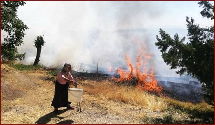 Anız yangını mahalleye sıçradı