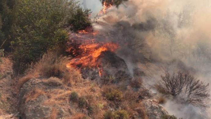 Antakya ve Samandağ'da orman yangını