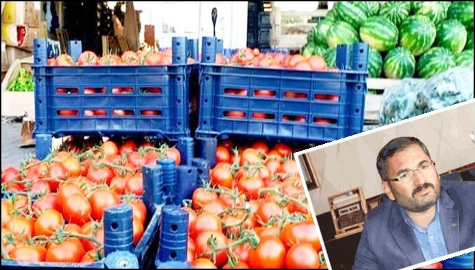 Başkan Akbaş'tan domates fiyatlarına yönelik açıklama