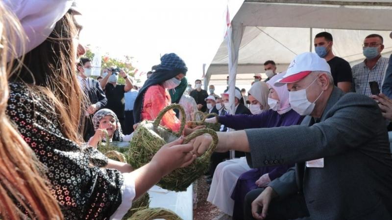 Binali Yıldırım Ve eşi Semiha Yıldırım Şanlıurfa'da fıstık hasadına katıldı