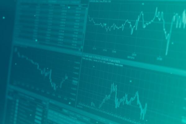 BİST Şirketleri veri bankası