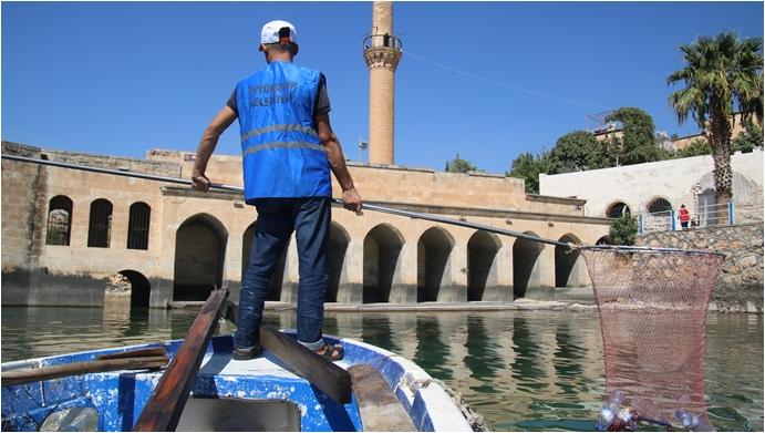 Büyükşehir'den 'Saklı Cennet Halfeti'de Kapsamlı Temizlik-(VİDEO)