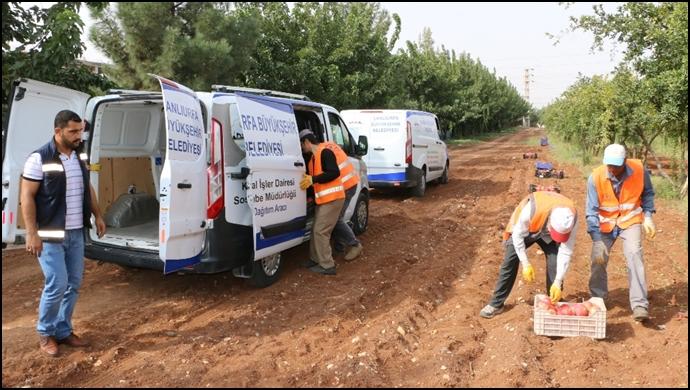 Büyükşehir'den Yardım Çalışmaları