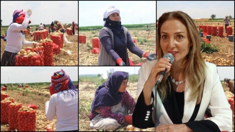 CHP Kadın Kolları Başkanı Nazlıaka: Tenceremizde aş değil iş değil dert kaynıyor dediler-(VİDEO)