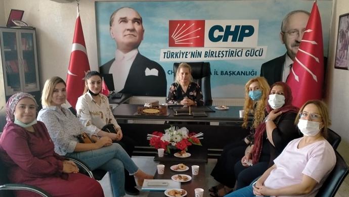 CHP Kadın Kolları Şanlıurfa'da Saha Çalışmalarını Sürdürüyor-(VİDEO)