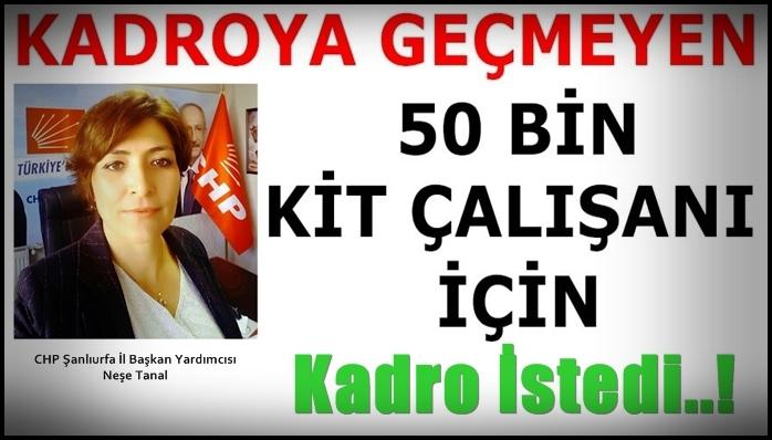 CHP'lı Tanal, 50 Bin Kit Çalışanına Kadro İstedi..!