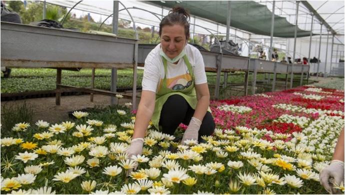 Çiçek Gibi Mersin Kadınların Ellerinde Canlanıyor