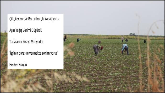 Çiftçiler zorda: Borcu borçla kapatıyoruz