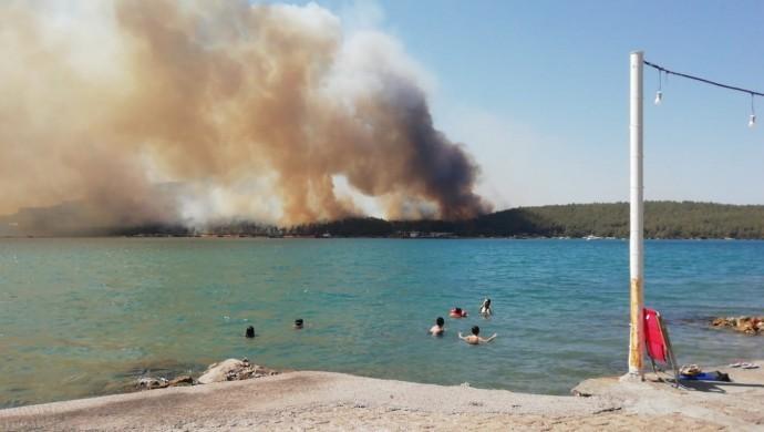 Ege Bölgesi'nde orman yangınları