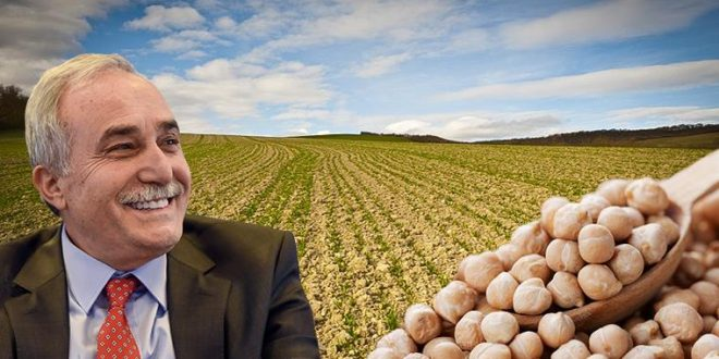 Fakıbaba: Nadas alanlarını tarımsal üretime kazandırıyoruz