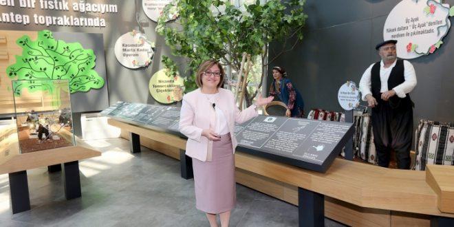 Gaziantep Fıstık Müzesi Açtı, Urfa Uyumaya Devam Etsin