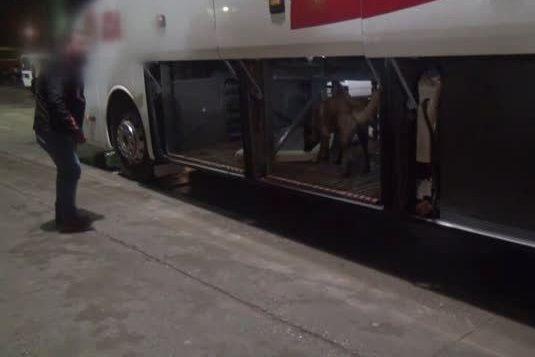 Gaziantep-Şanlıurfa Otoyolu Doğu gişelerinde durdurulan yolcu otobüsünde esrar yakalandı