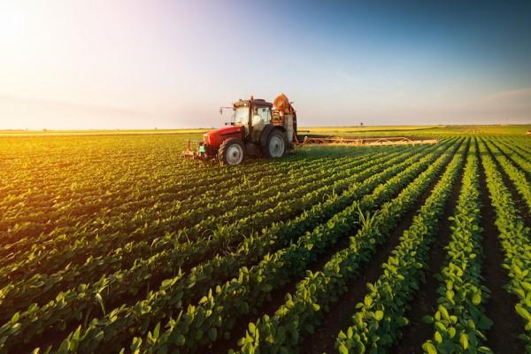 Gıda fiyatlarının 2050 yılına kadar yüzde 45 artırması bekleniyor