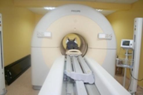 Harran Tıp Fakültesi Hastanesi'nde PETCT cihazı Müjdesi !