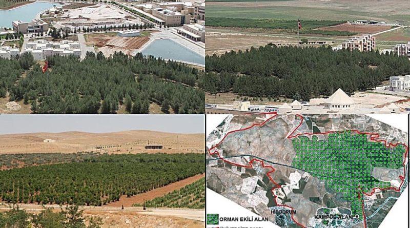Harran Üniversitesi'nde yeşillendirme çalışmaları