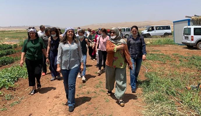 """HDP Kadın Meclisi """"Kadın Yoksulluğuna Hayır"""" buluşmalarında Urfa'daydı"""