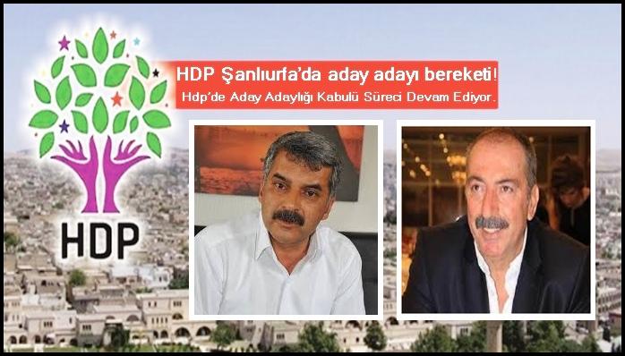 HDP Şanlıurfa'da aday adayı bereketi!