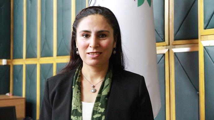 HDP'lı Milletvekili Ayşe Sürücü 13 Köyün Eğitim Sorunu Meclise Taşındı
