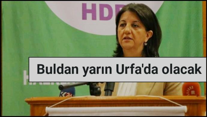 HDP'lı Pervin Buldan Yarın Urfa'ya Geliyor