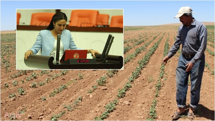 HDP'lı Sürücü, Suruçlu çiftçilerin sorunlarını Meclise taşıdı