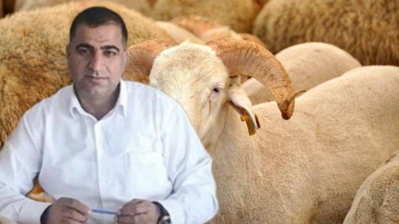 İş İnsanı Ali Şengül'den Kurban Bayramı Mesajı