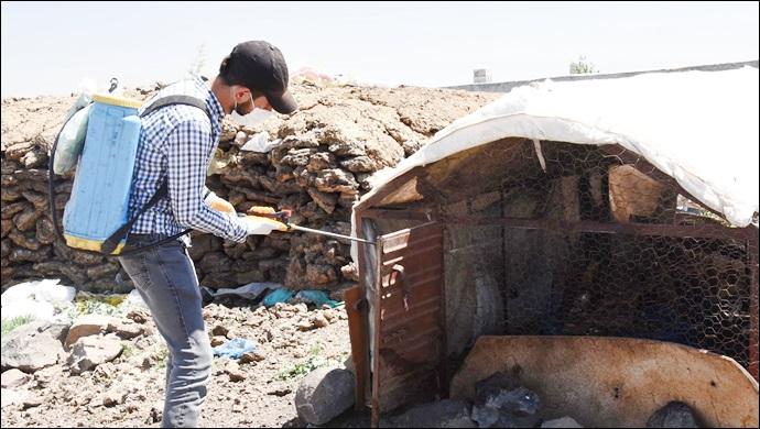 Kırsal mahallelerde haşere ile mücadele çalışmaları sürüyor