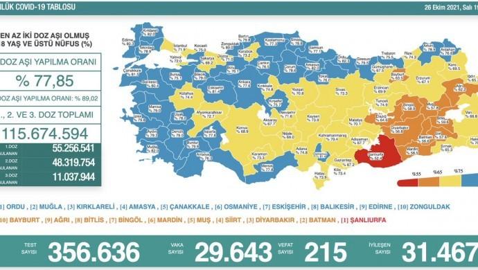 Kovid-19'dan 215 yeni vefat
