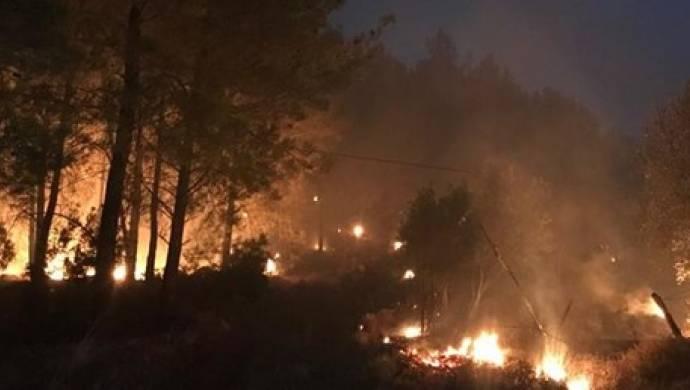 Muğla'da Orman Yangını: 2 Köy Boşaltıldı