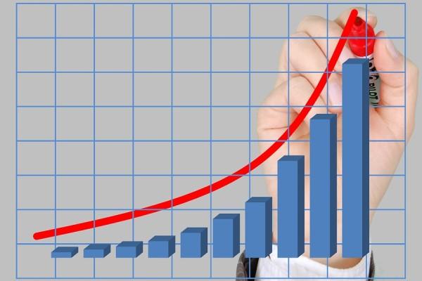 Net Holding'ten pay geri alımı
