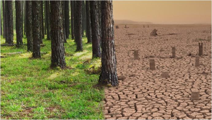 """Ödüllü """"Küresel İklim Değişikliği Fotoğraf Yarışması""""na başvurular devam ediyor"""