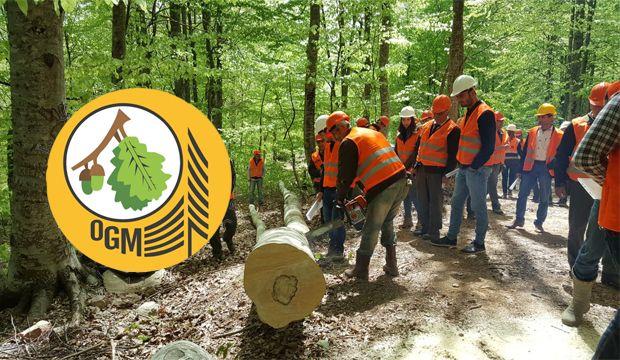 Orman Genel Müdürlüğü eleman alacak: Alınacak iller arasında Urfa'da var