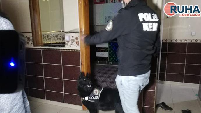 Şanlıurfa'da 200 polisle dev operasyon: 27 şahıs gözaltına alındı