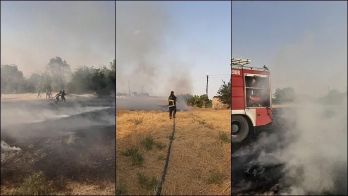 Şanlıurfa'da Anız yangını: itfaiye müdahale etti
