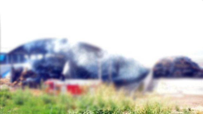 Şanlıurfa'da çiftlikte çıkan yangında 4 hayvan telef oldu