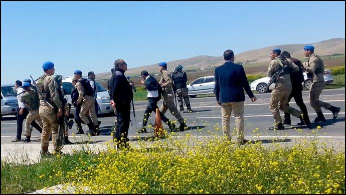 Şanlıurfa'da Jandarma Saldırganlara Göz Açtırmadı