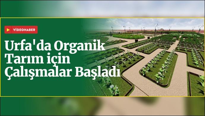 Şanlıurfa'da Organik Tarım için Çalışmalar Başladı