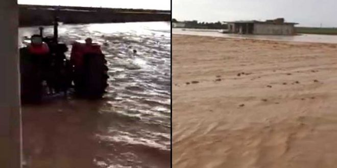 Şanlıurfa'da selin etkileri ağır oldu