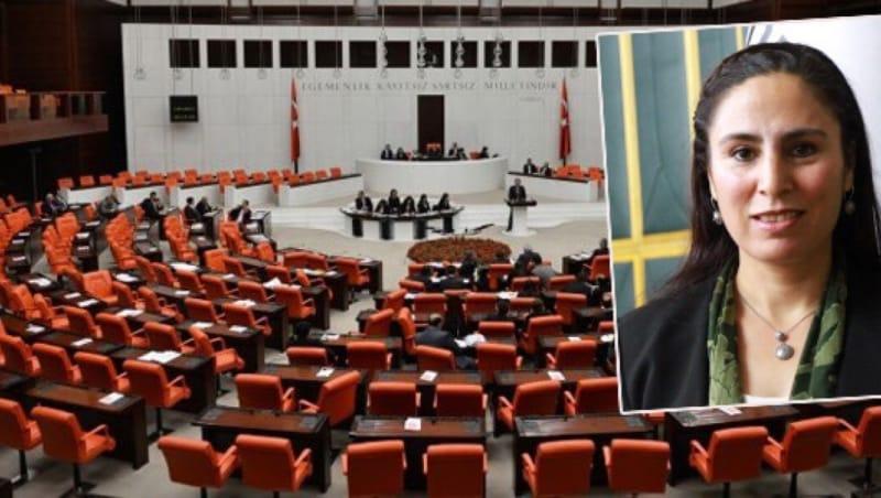Şanlıurfa'daki Sağlık İzinleri Meclis'e Taşındı