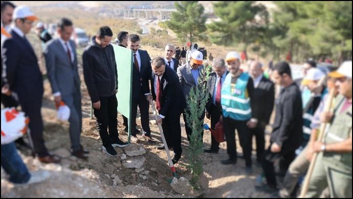 Savcı ve hakimler, Ağaçlandırma Kampanyasına Katıldı