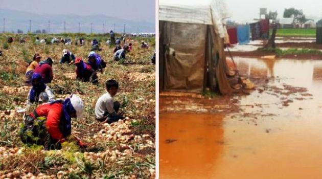 Sel, mevsimlik tarım işçilerini vurdu