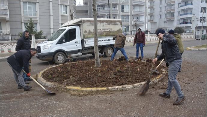 Siverek'te ağaçlandırma çalışmaları başladı
