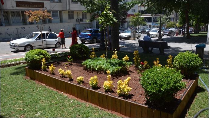 Siverek'te park ve yeşil alanlara çiçek ekimi yapılıyor