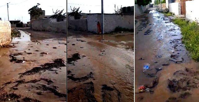 Sulama suları İki Ağız Mahallesi'ni göle çevirdi
