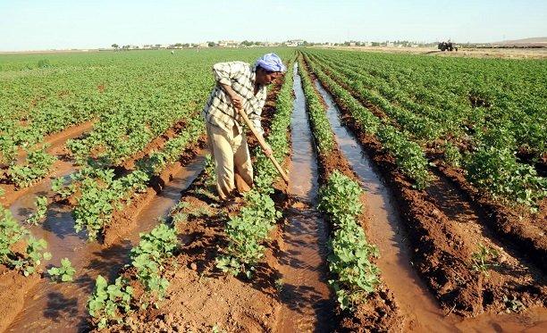 Suruç çiftçisinin sorunları meclise taşındı