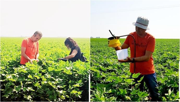Tarım danışmaları sahada çalışmalarına devam ediyor