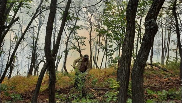 Tunceli'nin Ovacık ve Hozat ilçelerindeki yangın söndürüldü