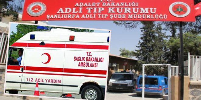 Urfa – Diyarbakır karayolunda feci kaza: Ölü ve yaralılar var …